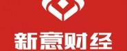 广西新意财经咨询有限公司