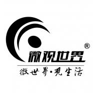 阳江市微观世界贸易有限公司