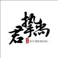 广州君挚尚珠宝饰品有限公司